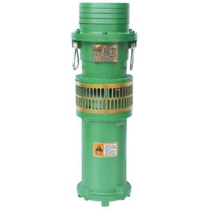 W (D) X small submersible pump